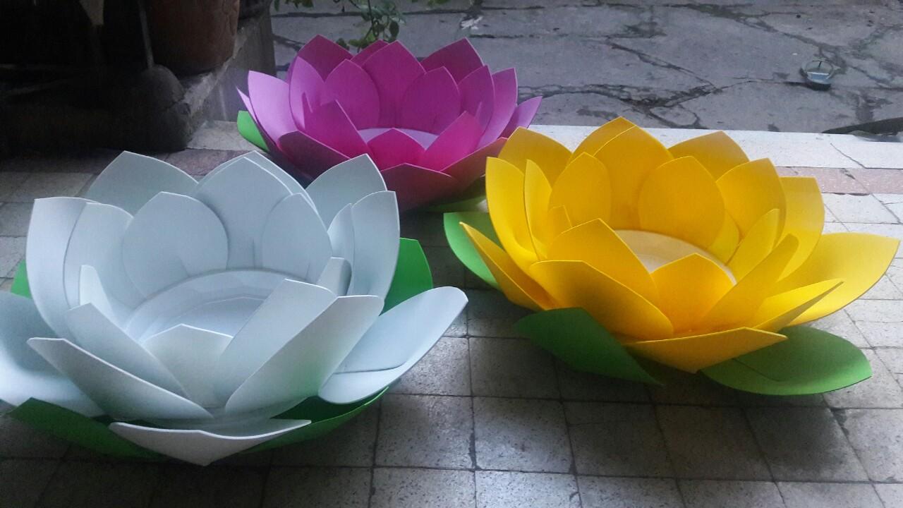 Hoa đăng 03 lớp cánh nở rộng 30 cm - 80 cm cực kỳ nổi bật