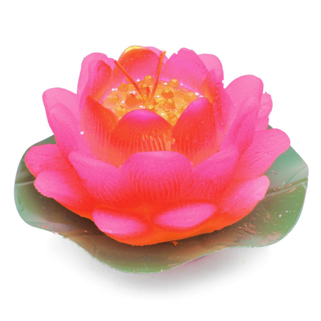 Hoa sen mọc từ đầm nước, từ một cõi trần ô trọc, đã vươn lên trở thành một bông hoa thanh cao, bông hoa của vũ trụ.